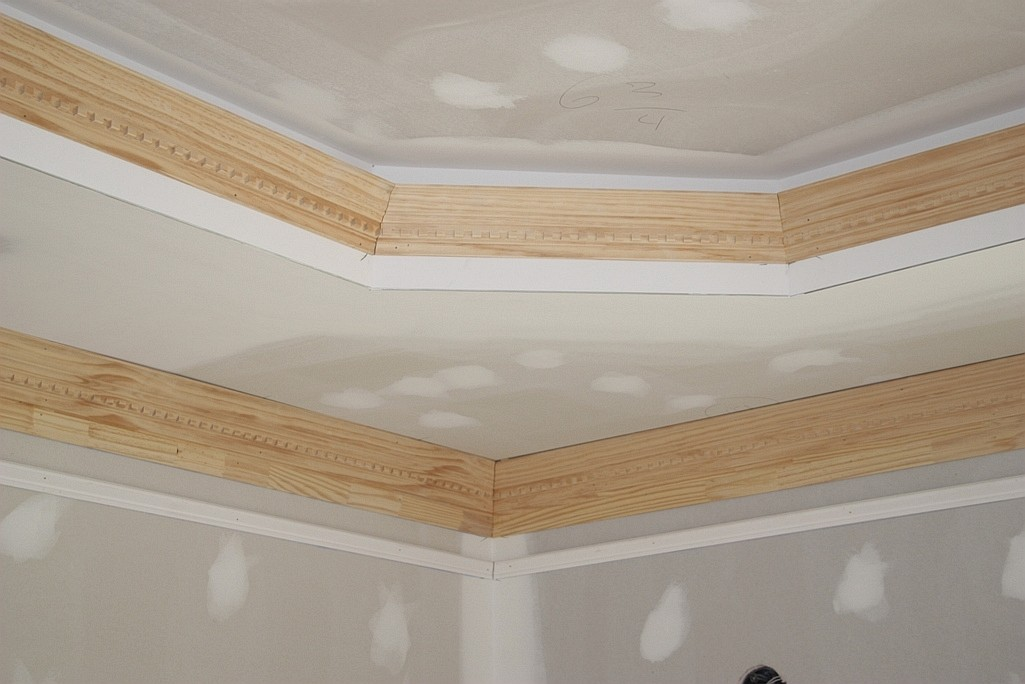 Tray ceiling lighting rope lilianduval tray ceiling lighting gallery of design bedroom aloadofball Gallery